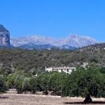Finca auf Mallorca kaufen